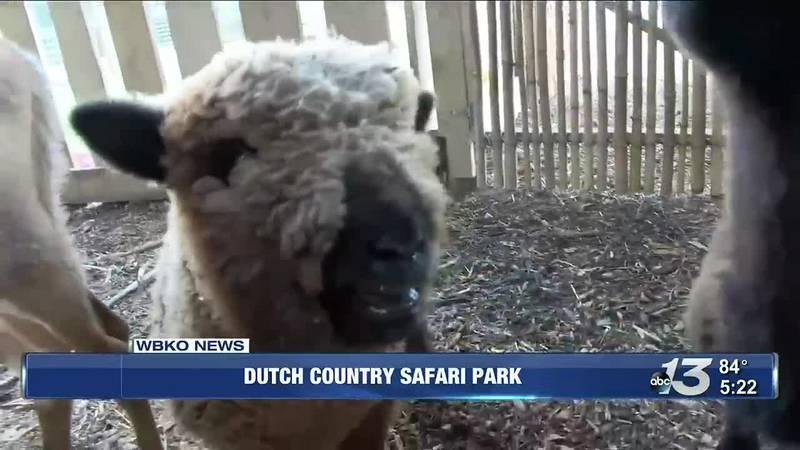 Dutch Country Safari Park @ 5