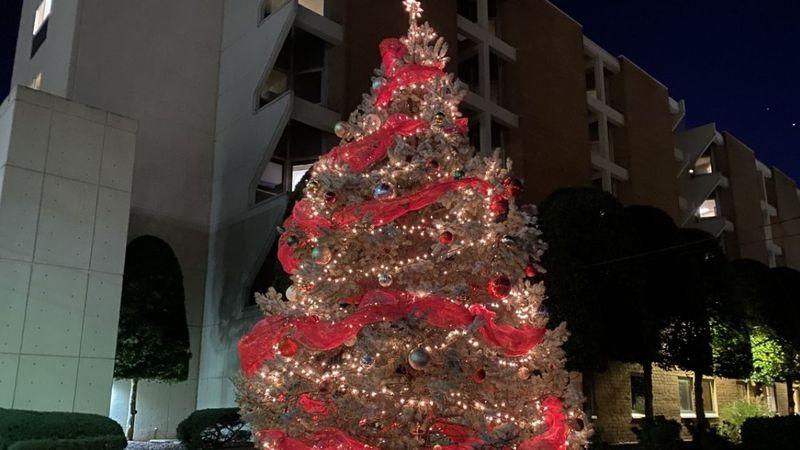 Christmas tree outside of Med Center Health (WBKO)