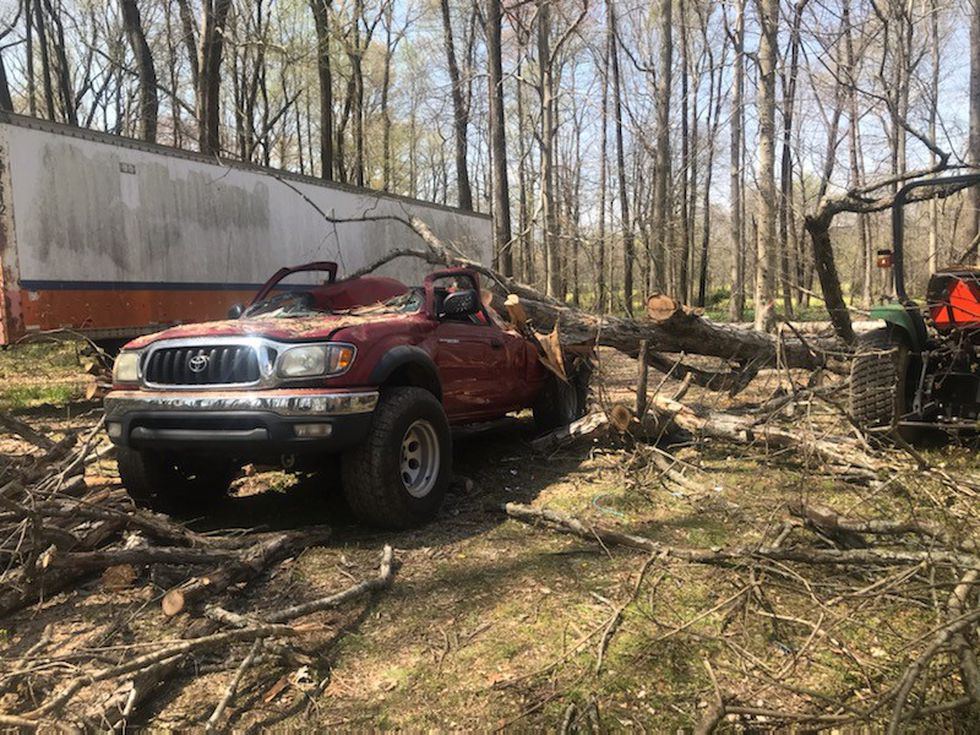 The accident happened during tree work in Warren County's Alvaton community.