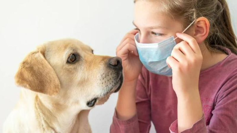 The Food and Drug Administration is warning Americans that while their pets don't spread...