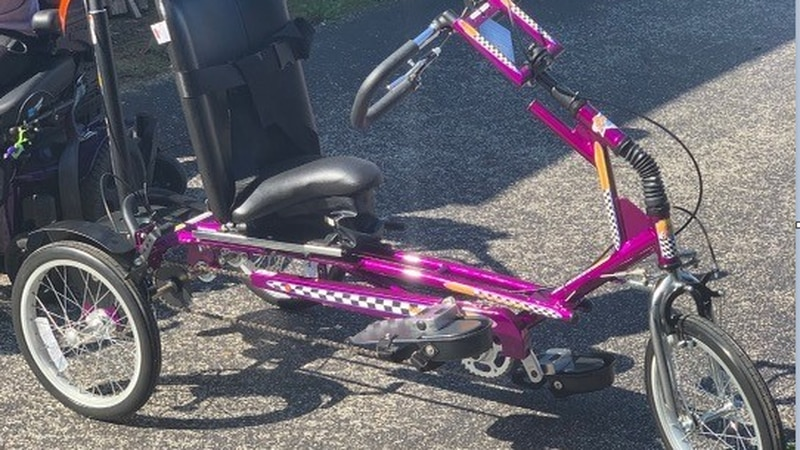 Tricycle stolen from special needs child