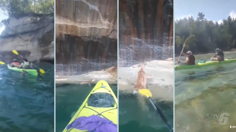 Images from the fawn rescue video taken along Pictured Rocks National Lakeshore in Lake...