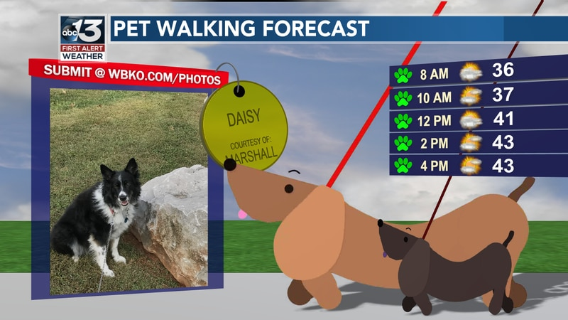 Not a bad day to take the pet out for a walk, but it will be cool for most of the day!