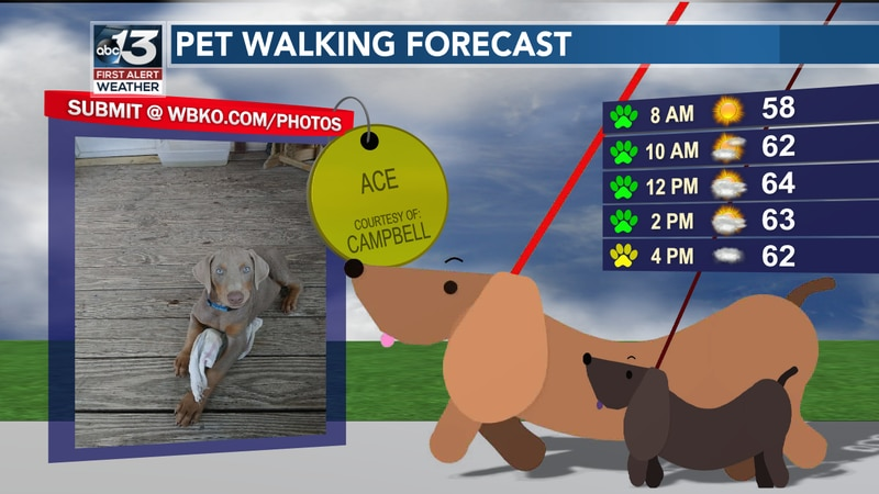 A nice day for a dog walk - but watch out for rain showers that develop in the afternoon!