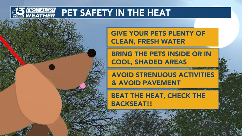 Pet safety in the heat.