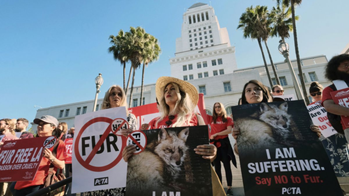 In this Sept. 18, 2018 file photo, Margo Paine, center, joins protesters with the People for the Ethical Treatment of Animals (PETA) holding signs to ban fur in Los Angeles prior to a news conference at Los Angeles City Hall. California will be the first state to ban the sale and manufacture of new fur products and the third to bar most animals from circus performances under a pair of bills signed Saturday, Oct. 12, 2019 by Gov. Gavin Newsom. (AP Photo/Richard Vogel, File)
