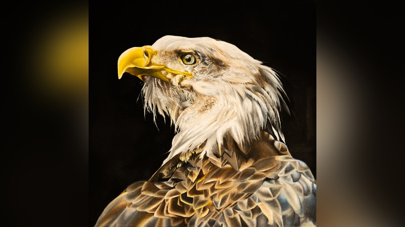 """Portrait of an Eagle"" created by the 1st Place Overall winner of the 2021 Congressional Art..."