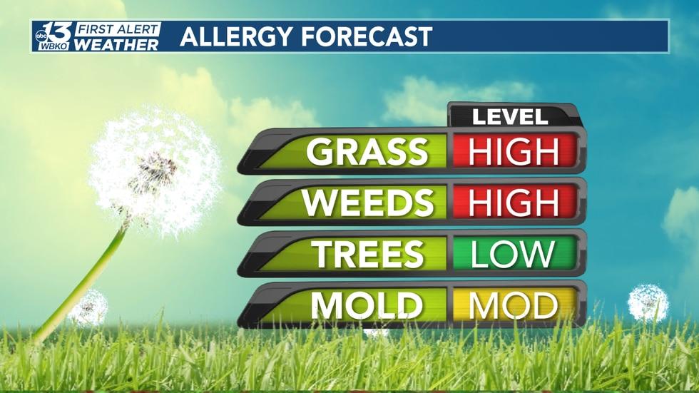 Allergy Forecast