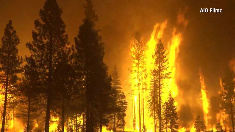 After burning more than 274,000 acres, the Dixie Fire is the 8th largest blaze in California's...