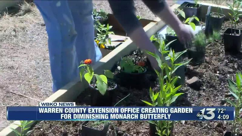Warren Co. extension office creating waystation for diminishing Monarch Butterfly  @ 4