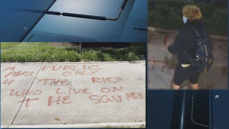 Graffiti suspect