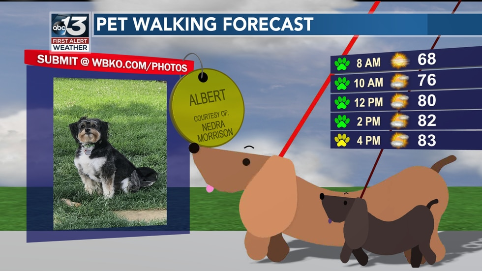 No ruff weather today -- though there could be a stray shower in the afternoon. Most are dry though!