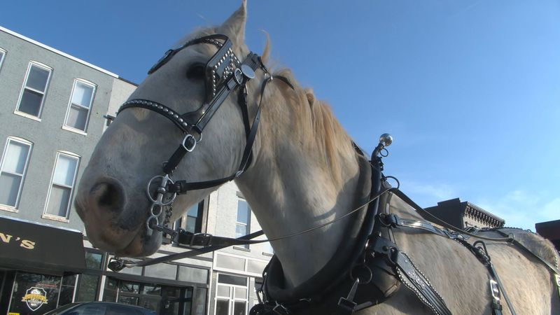 BG horse and carriage service no longer able to park at square.