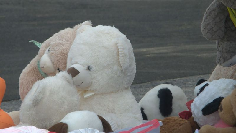Great Teddy Bear Drop and Ride