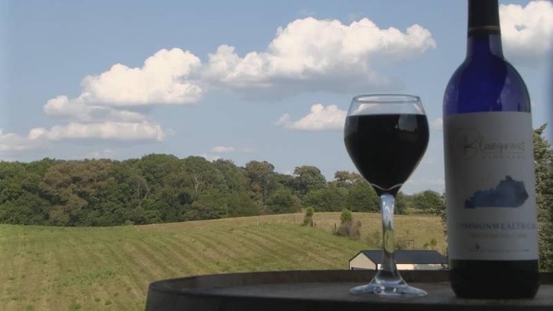Bluegrass Vineyard