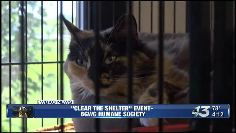 """""""Clear the Shelter"""" Event at BGWC Humane Society"""