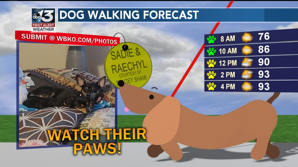 You'll have a hot dog as you take a stroll today! Be mindful of how hot it will be and also avoid pavement later today so they won't burn their paws. (The photo of Sadie & Raechyl is courtesy of Stacey Shaw)