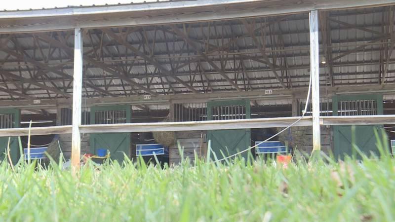 horse racing returns to Kentucky Downs