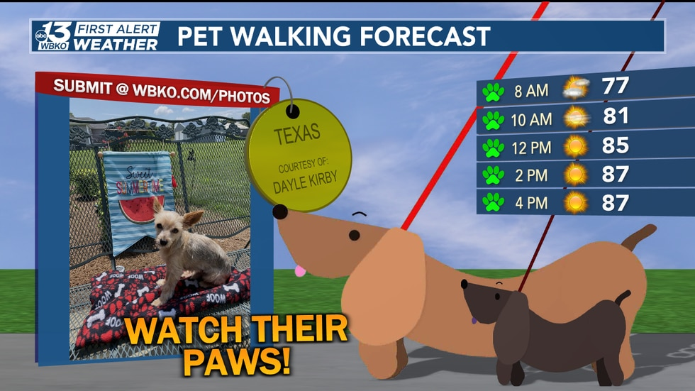 Another great day to take the pets out for a stroll... just watch their paws as pavement temps...